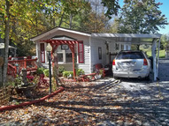 6 Canna Lily Hendersonville NC, 28792