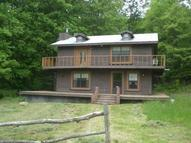 1658 Snake Hollow Rd Sneedville TN, 37869