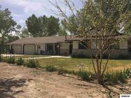 1775 Candace Fernley NV, 89408