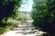 2605 S Flower Pot Ranch Rd Camp Verde AZ, 86322