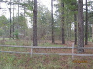 00 Peeble Lane Willacoochee GA, 31650