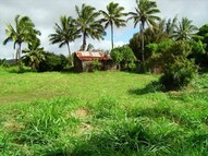 Hoea Road Lot #: 1 Hawi HI, 96719