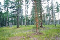 Us Forest 76 Angel Fire NM, 87710
