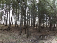 1.69 Ac Armstrong Creek Ct Armstrong Creek WI, 54103
