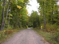 Lot 2 Co Rd 424 Crystal Falls MI, 49920