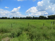 Lot 351c Cr54 East Kathleen FL, 33849
