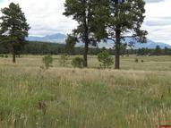 175 Industrial Circle Pagosa Springs CO, 81147