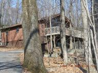 207 Lower Swiftwater Rd Swiftwater PA, 18370
