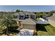 3519 Fortingale Drive Wesley Chapel FL, 33543