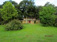 30 Plumwood Cr -320 Cleveland TX, 77328