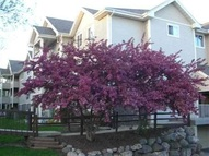 1136 Morraine View Dr #206 Madison WI, 53719