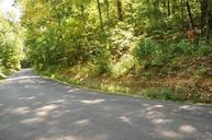 Shady Shores Lane Kingston TN, 37763