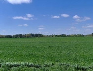 """Tract """"A"""" Newell Road (25+/-Acres) Byron GA, 31008"""