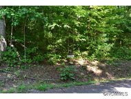 Lot 7 Fern Cove Lane Gerton NC, 28735