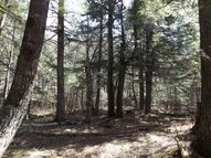 3.69 Ac Moonlight Ln Armstrong Creek WI, 54103