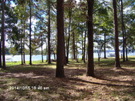 Lot A Griffith Subdivision Fort Gaines GA, 39851