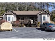 18 See Off Mountain Road Brevard NC, 28712