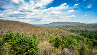 Green Ridge Trails - Lot #2 Harriman TN, 37748