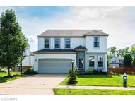 9567 Taberna Ln Olmsted Township OH, 44138