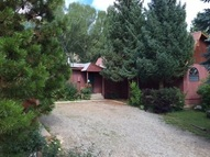 225 River Front Road Almont CO, 81210