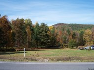 419 New York State Route 149 Lake George NY, 12845