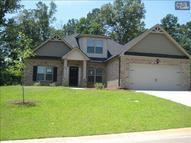 414 Hollow Cove Road 310 Chapin SC, 29036