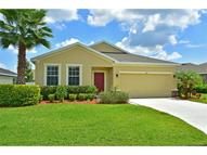 4616 Halls Mill Crossing Ellenton FL, 34222