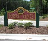 100 Forest Ridge Trail Swansboro NC, 28584
