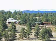 1 Camp Dr Westcliffe CO, 81252