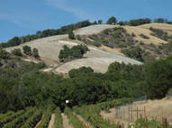 Address Not Disclosed Paso Robles CA, 93446