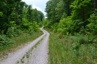 Lot 34 Wilson Ridge Road Wilder TN, 38589