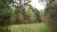 Lot 3 Old Shealy Road 3 Chapin SC, 29036