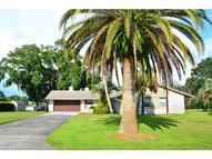 3814 Lake Breeze Drive Land O Lakes FL, 34639