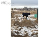0 County Road 68 Briggsdale CO, 80611