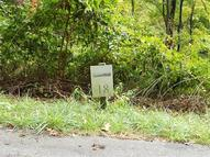 Lot 16 And 18 Mountain Watch Drive 16 And 18 Waynesville NC, 28785