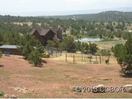 10920 County Road 194 Salida CO, 81201