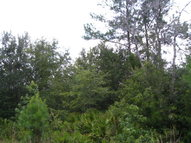 Lot 39  Waverly Lane Waverly GA, 31565