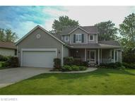 1126 Meadowbrook Dr Amherst OH, 44001