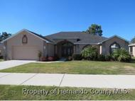 4525 Sand Ridge Spring Hill FL, 34609
