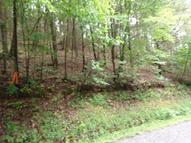 Lot 98 Bueno Vista Cosby TN, 37722