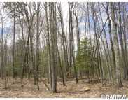 Lot 1 Timber Wolf Dr Springbrook WI, 54875