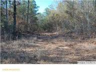 Co Rd 22 76 Acres Billingsley AL, 36006