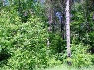 Lot #8 Johnson Falls Ct Crivitz WI, 54114