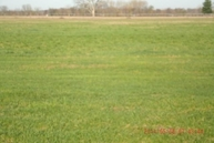 Lot 10 Maple Crest Dr 10 Orland IN, 46776