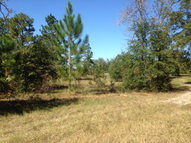 Lot 1 Oakridge Farms Windsor SC, 29856