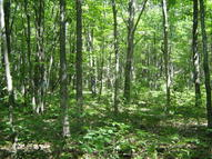 The Trail Road Lots 10 Thru 18 & 20 Thru 45 Topinabee MI, 49791