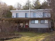 Address Not Disclosed Downsville NY, 13755