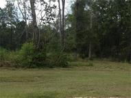 Pleasant Ridge Ext. Ponchatoula LA, 70454