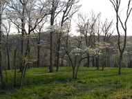 Lot 10 Woods Ridge Highlandville MO, 65669