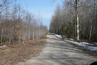 Rail Road Grade 220 Acres Cheboygan MI, 49721
